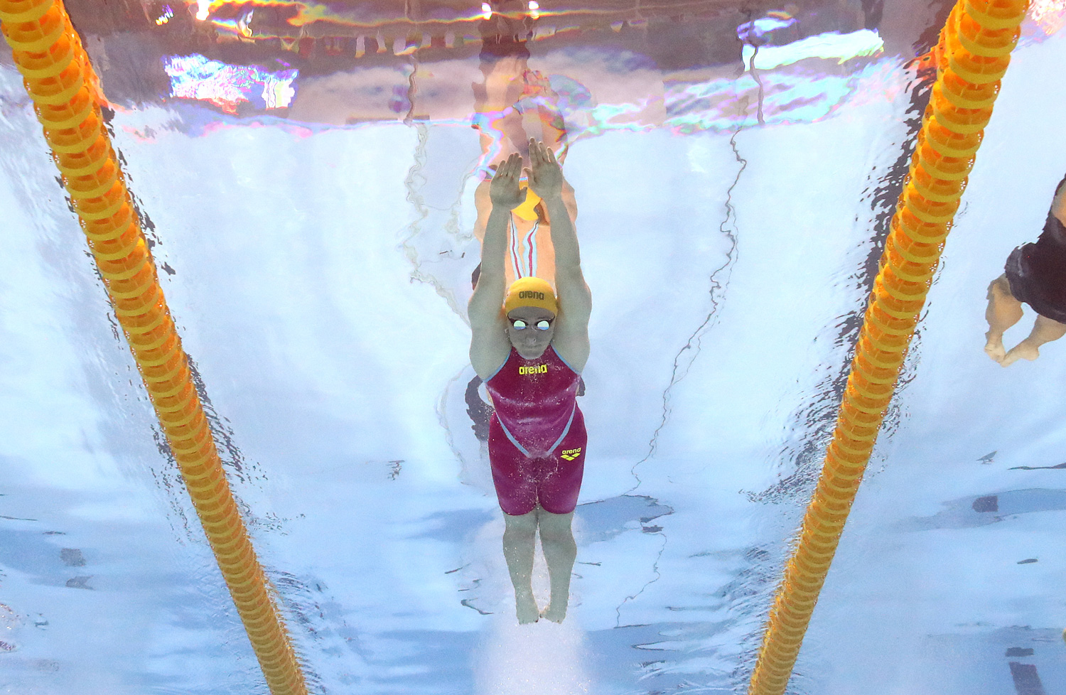 3 principles to follow for freestyle swimming Image